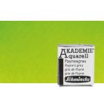 Aquarela Schmincke Akademie,   Verde Maio 552, 1/2Godet.