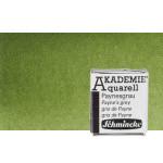 Aquarela Schmincke Akademie,   Verde Oliva 554, 1/2Godet.